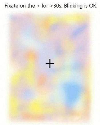 (그림 2) 가운데 십자가를 30초 동안 집중해서 보자.