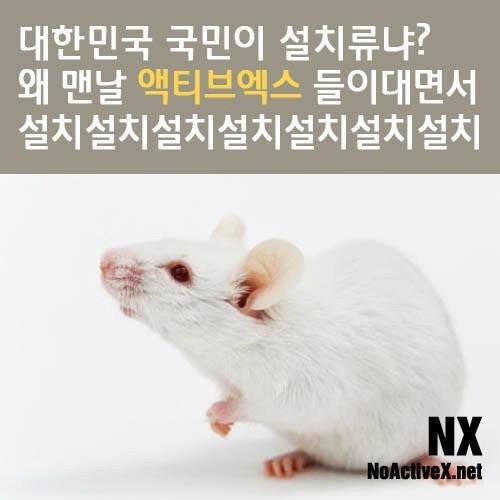 윈도10 출시 이후 더 커진 '액티브X', 'NPAPI' 퇴출 목소리 - 경향신문
