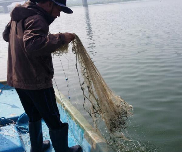 """지난 23일 경남 김해시 대동면 앞 낙동강에서 한 어민이 배에서 빈 그물을 끌어올리고 있다. 어민들은 """"4대강 사업 이후 물고기 서식 환경이 악화되면서 어획량은 거의 제로 수준""""이라고 말했다."""