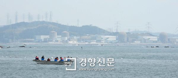 지난 6월 영구정지된 고리 1호기와 송전탑들이 옅은 안개에 휩싸여 있다. 강윤중 기자