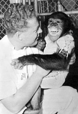 영장류 최초로 우주비행을 한 침팬지 '햄'. 사람과 침팬지는 모두 사람과(Hominidae)에 속한다. 말하자면 두 'Hominidae'가 포즈를 취하고 있는 셈이다.| NASA