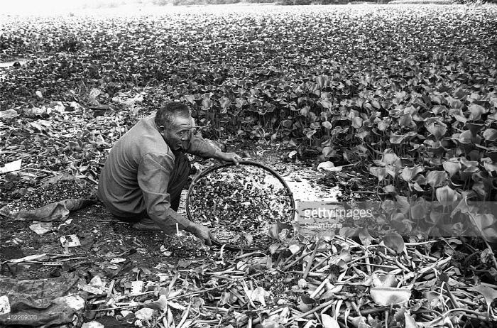 중국 광둥성 귀유의 전자쓰레기 해체장. Getty Images