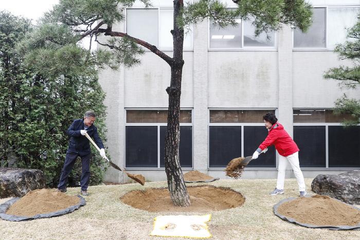문재인 대통령이 5일 73회 식목일을 맞아 청와대 경내에서 소나무를 심고 있다. 청와대 제공