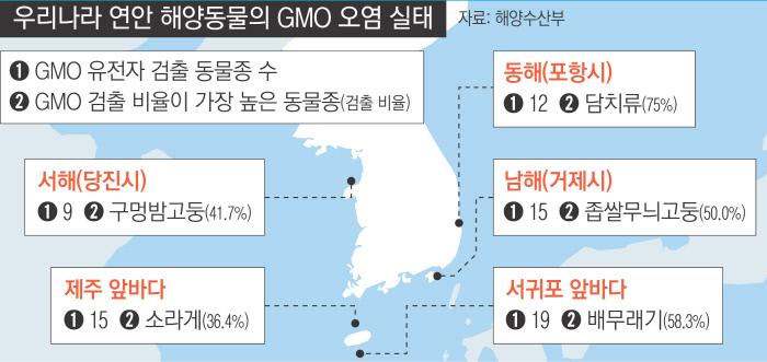 [단독]국내 연안 조개·고둥 'GMO 오염' 심각