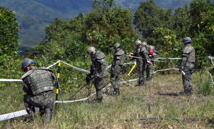 지난 2일 강원 철원군 비무장지대에서 군인들이 지뢰제거 작업을 하고 있다. 남북은 군사분야 합의서에서 10월 1일부터 20일까지 판문점 지뢰부터 제거하기로 했다. 화살머리고지 지뢰제거는 11월 30일까지 끝내기로 했다.   | 사진공동취재단