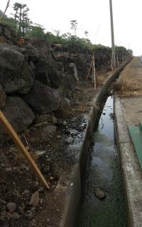 2009년 보육교사 ㄴ씨가 제주시 애월읍에 있는 농업용 배수로에서 숨진 채 발견됐다.박미라 기자