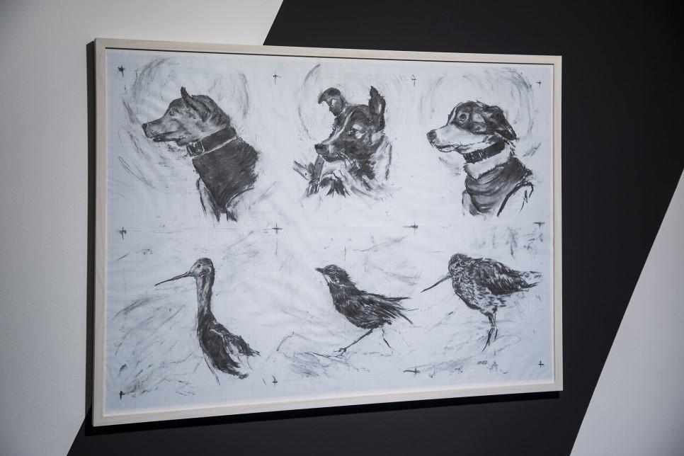 최대진 Daejin Choi, 벨카, 라이카, 스트렐카 그리고 이름없는 새마리 철새들 / Belka, Laika, Strelka and nameless 3 migrotary birds, 2019, 모눈 종이에 목탄 / Charcoal on graph paper, 74 x 105cm