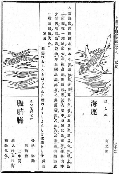 1712년 출판된 일본의 백과사전 <화한삼재도회>에 기록된 물범과 강치.