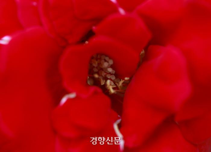 우철훈 선임기자