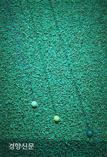 빼어난 색채 감각과 편백나무 톱밥의 물성을 조화시키고 있는 김시현 작가의 '자연 이야기'(캔버스에 아크릴·혼합매체, 116×72.7㎝), 세종갤러리 제공