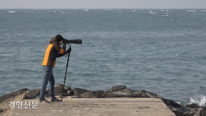 김현우 연구사가 제주도 남방큰돌고래를 조사하고 있다. / 김현우 제공