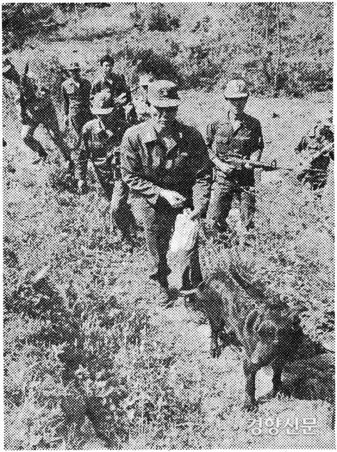در 27 مه 1981 ، پلیس در شهر Gwangju ، Gyeonggi-do به جستجوی خرس پرداخت.  عکس روزنامه کیونگ یانگ