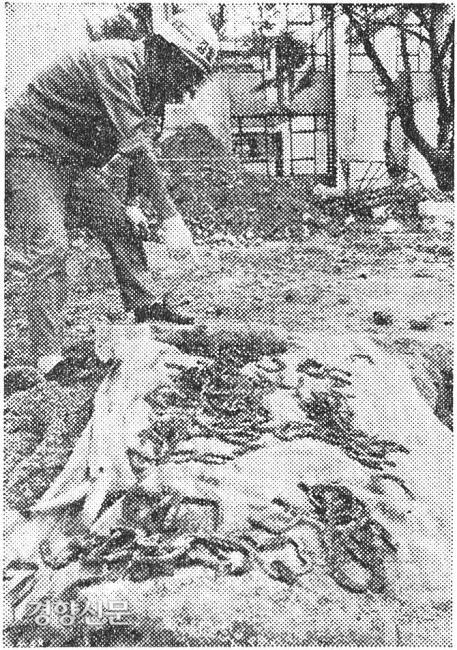 پوسته هایی که هنگام تخریب کالج هنرهای لیبرال در دانشگاه ملی سئول در سال 1975 در زمین پیدا شد. من فکر کردم او در 25 ژوئن به خاک سپرده شد و یک ردیاب مین بسیج شد