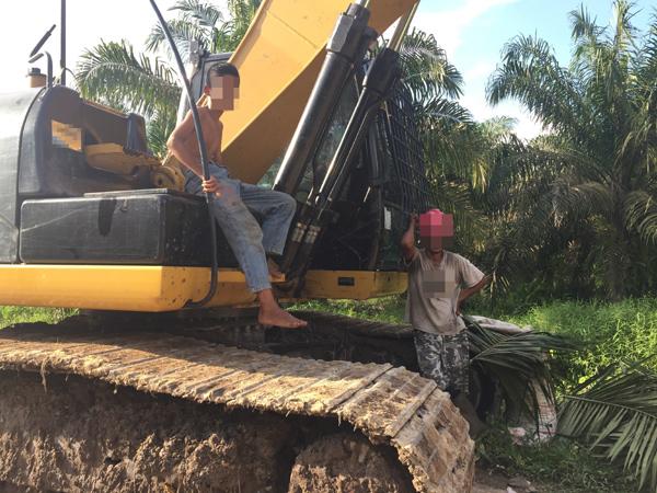 2016년 11월 인도네시아 수마트라섬의 팜유 농장에서 미성년자 아들이 아버지의 할당량을 채우기 위해 함께 일하고 있다. / 공익법센터 어필 제공
