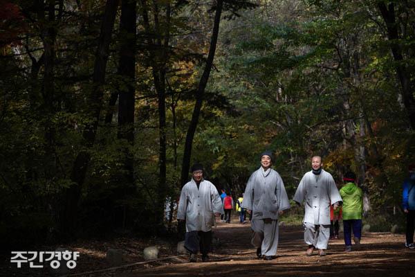 정념 스님(가운데)이 월정사를 둘러싼 전나무 숲길을 따라 포행하고 있다. / 우철훈 선임기자