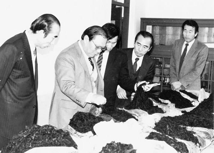 1970년 3월 촬영된 완도 미역의 검사 관경
